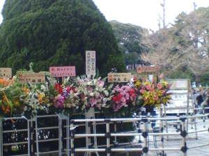 May'n2011武道館